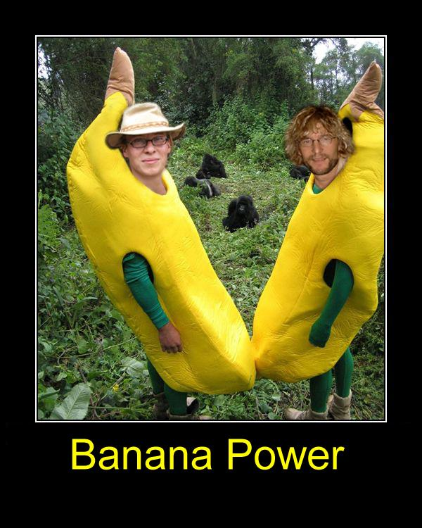 16 Banana Power