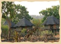 Stelzenbungalows im Elephant Valley Camp