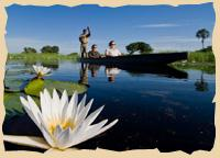 Camp Livingstone - Mamili Nationalpark